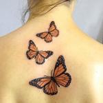 tatuaje de mariposas naranjas en la espalda