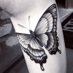 tatuaje de una mariposas negra en el antebrazo