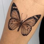 tatuaje de una mariposa de color marrón en el brazo