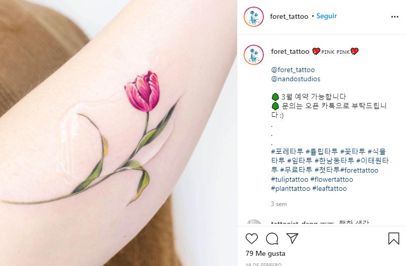 significado de los tulipanes rosas